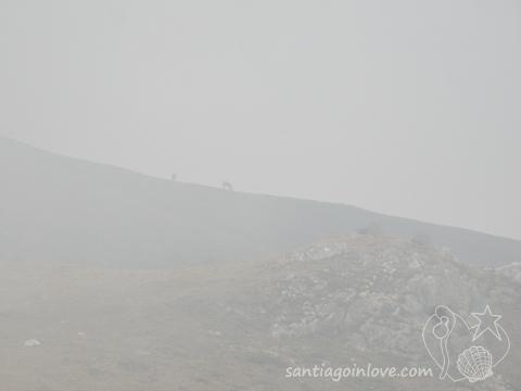 brume fumée écobuage compostelle