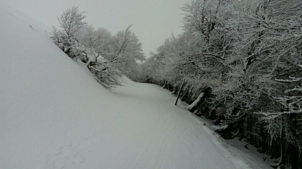 Etape Saint Jean Pied de Port Roncevaux sous la neige - Santiago in Love - CC BY-SA-NC
