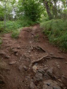 steep way down SPdAllier