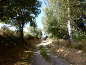 Podiensis - to 4 chemins
