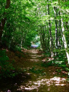le puy route - to the Sauvage